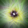 Floral Abstract Square by Terry DeLuco