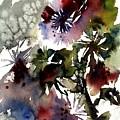 Floral by Anne Duke