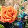 Floral Arrangement by Lillian Hibiscus