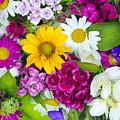 Floral Chaos Summer Collage by Aleksandr Volkov