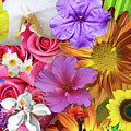 Floral Collage 01 by Gene Norris