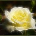Floral Dream by Ricky Barnard