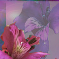 Floral Dust by Debra     Vatalaro