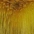 Floral Falls 5 by Tim Allen