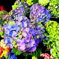 Floral Fantasy by Ed Weidman
