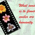 Floral Filmstrip by Bill Barber