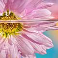Floral 'n' Water Art 6 by Kaye Menner