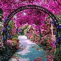 Floral Pathway by Sarah Waldman