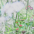Floral Sketch by BiR Fotos