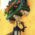 Flores Rojas En Cartagena by John Rizzuto