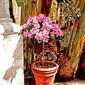 Floret Nouveau by David Lloyd Glover