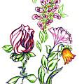 Florets by Judith Herbert