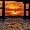 Florida Before Sunset  by Sherri Hubby
