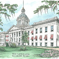 Florida Capitol 1902 by Audrey Peaty