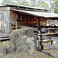 Florida Cracker Barn by D Hackett
