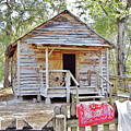 Florida Cracker Church And School House by D Hackett