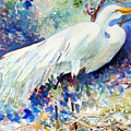 Florida Egret With Nest by Joan Dorrill