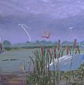 Florida Everglades Thunderstorm by Ken Figurski