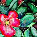 Florida Flower by Margaret Fortunato