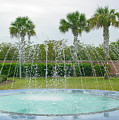 Florida Fountain by Pat Turner