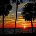 Florida Gulf Sunset by Ronald Lutz