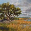 Florida Intercoastal by Donna Grasso