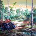 Florida Osceola Turkeys- The Two Kings by Daniel Butler