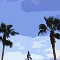 Florida Queen Palms   by Allan  Hughes