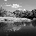 Florida Shoreline by Robert Wilder Jr