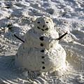 Florida Snowman by David Lee Thompson