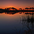 Florida Sunrise by Charlie Choc