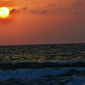 Florida Sunset 1 by Kylee S
