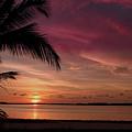 Florida Sunset by Joseph G Holland