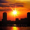 Florida Sunset by Tatiana Gorbett
