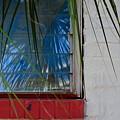 Florida Window by Jan Prewett