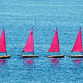 Flotilla by John Bradburn
