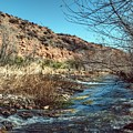 Flow Of The Verde River by Thomas Todd