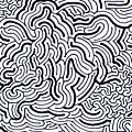 Flow by Steven Natanson
