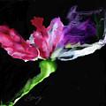 Flower In The Dark 3 by Bonny Butler