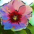 Flower 8-15-09 by David Lane