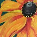 Flower A-blaze by Denise M