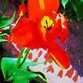 Flower by Amber Carpenter
