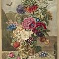 Flower Arrangement, Anthonie Van Den Bos, 1778 - 1838 B by Anthonie van den Bos