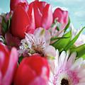 Flower Bouquet by Carlos Caetano