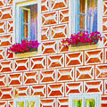 Flower Boxes In Slavonice by Jeelan Clark