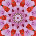 Flower Burst by Wanda-Lynn Searles