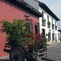 Flower Cart Old Antigua by Kurt Van Wagner
