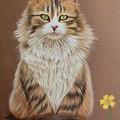Flower Cat by Denise Nijs