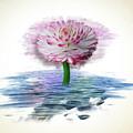 Flower Digital Art by Lakshmikanth Kummari