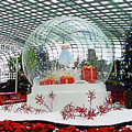 Flower Dome 2 by Ron Kandt